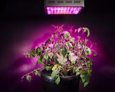Volba ideálního LED svítidla